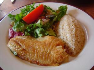 sawtelle fish