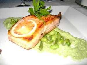 aquaknox salmon